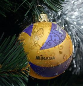 Поздравления с новым годом для волейбола